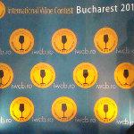 Gala Premiilor IWCB 2013
