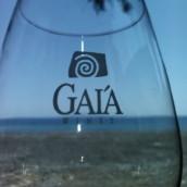 Assyrtiko By Gaia 2014 Wild Ferment