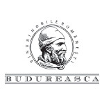 Budureasca Shiraz 2014
