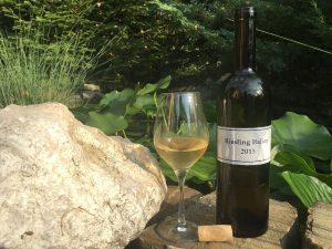 oenolog.ro InterVitt Riesling Italian 2013 vin alb sec Gabi Lacureanu